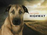 Last Chance Highway
