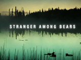 Stranger Among Bears